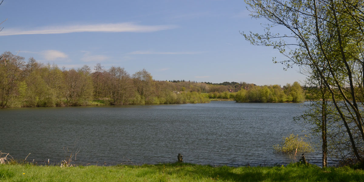 Moor Green Lakes Picture